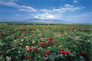 Beautiful Armenia  (Image source: www.tufenkianheritage.com)