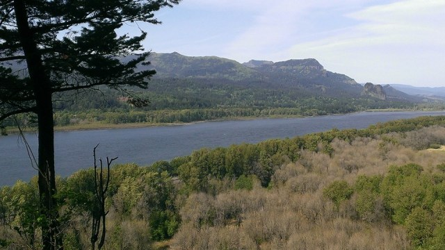 View of Columbia River just NW of Horsetail Falls